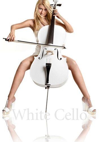 white cello liz schneider